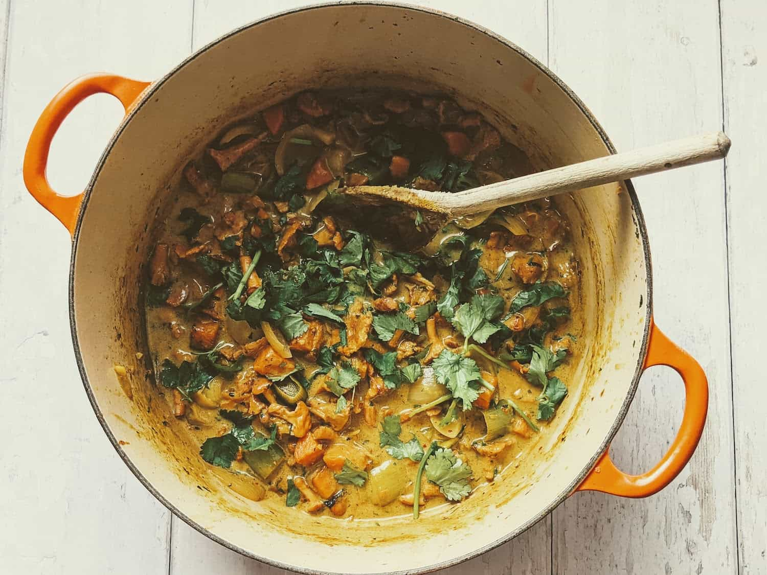 Chanterelle and Coconut Curry